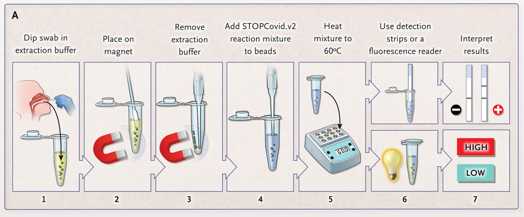 Fig. 5: STOPCovid.v2 working flow with the usage of magnetic beads.