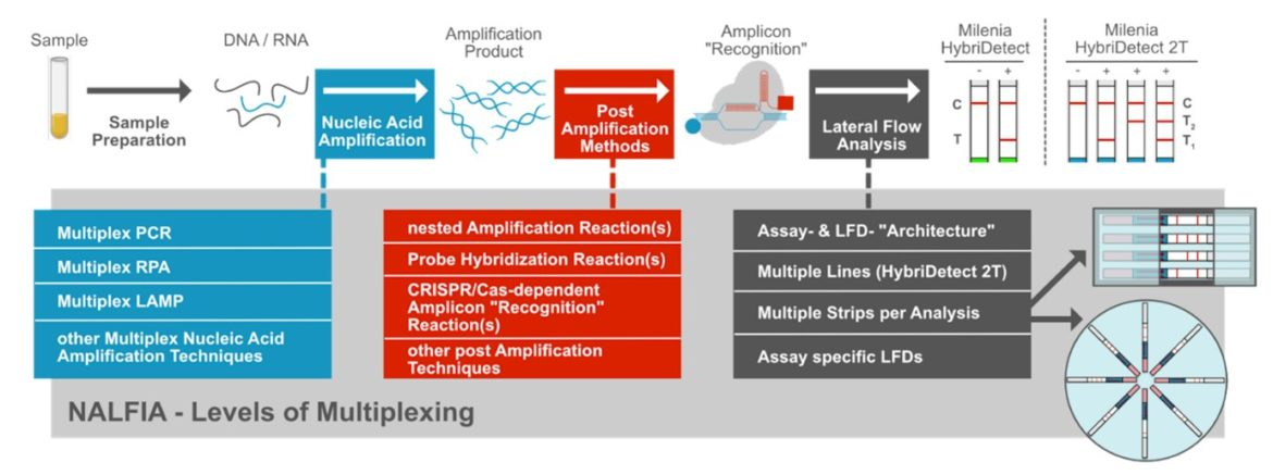 Muliplex Applications and Lateral Flow - Levels of Multiplexing