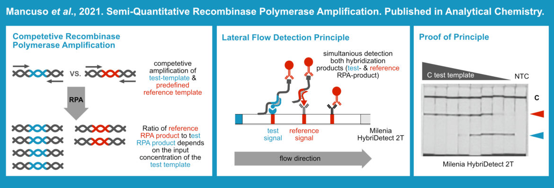 Semiquantitative RPA & Lateral Flow