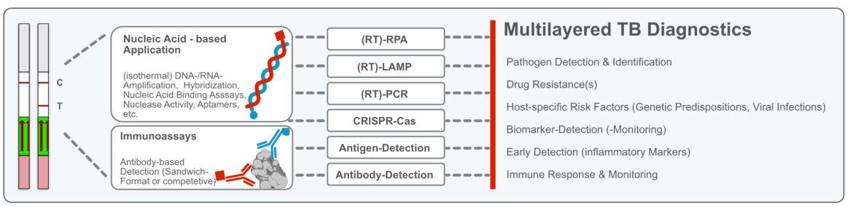Milenia-HybriDetect-as tool for multilayered TB Diagnostics